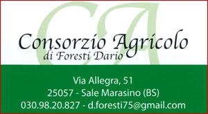 Consorzio Foresti